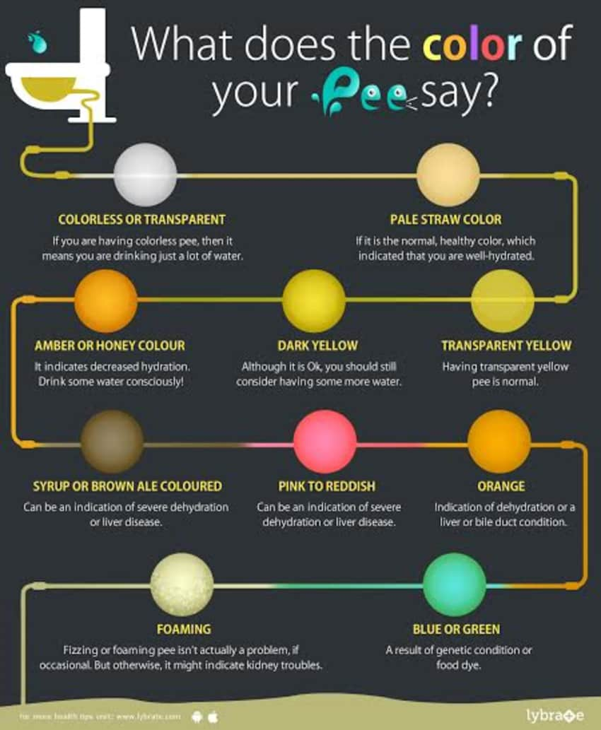 Ever Wondered What The Color Of Your Urine Says About Health