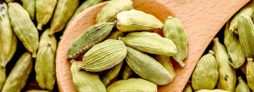 cardamom for weight gain