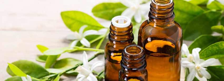 Benefits of Neroli Oil And Its Side Effects   Lybrate