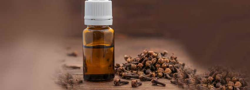 Clove Oil Benefits And Its Side Effects | Lybrate