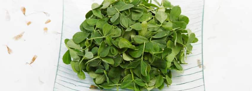 Fenugreek Leaves (Kasuri Methi) Benefits And Its Side