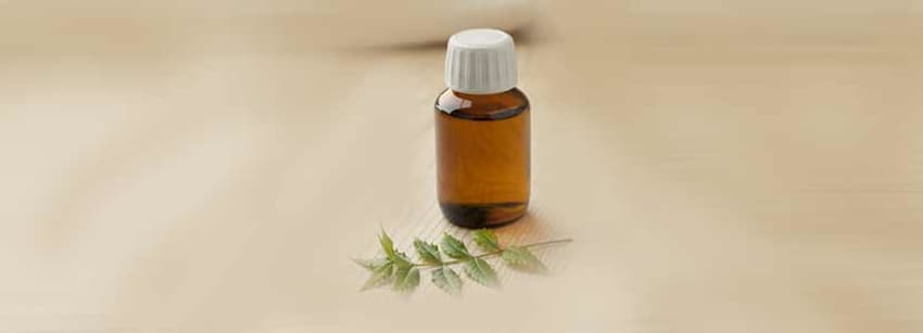 Neem Oil Benefits And Its Side Effects   Lybrate