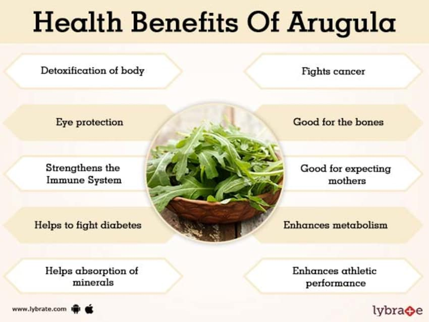 Benefits Of Arugula And Its Side Effects Lybrate