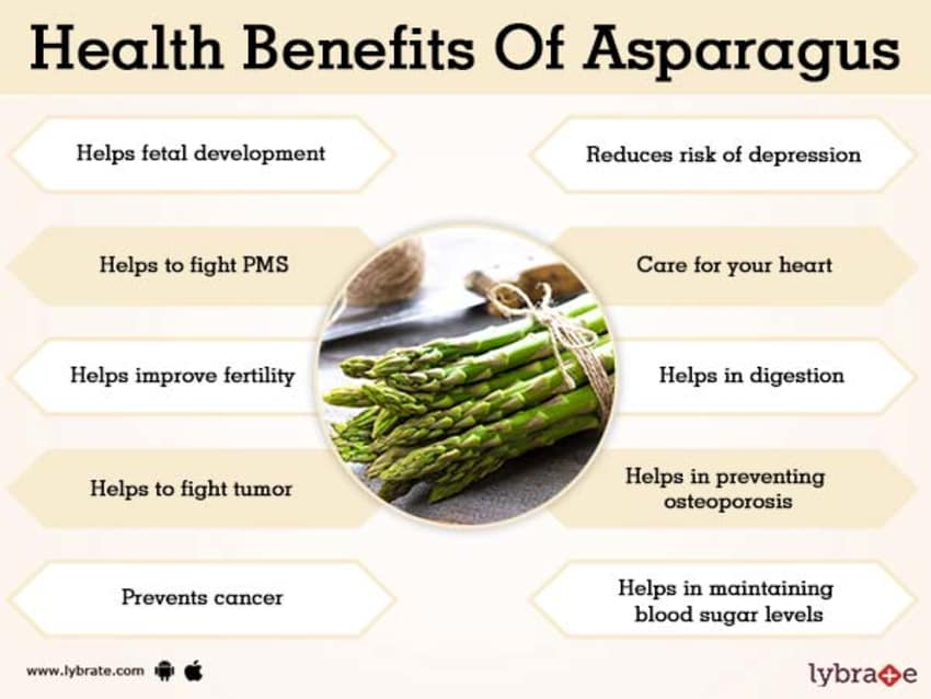 Benefits of Asparagus And Its Side Effects | Lybrate
