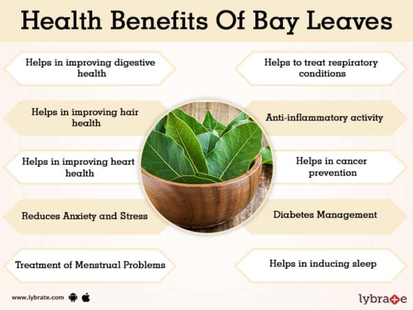 Benefits of Bay Leaves And Its Side Effects | Lybrate