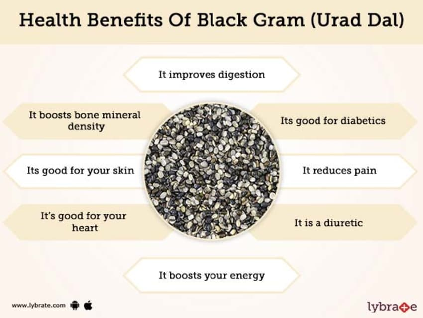 Black Gram Urad Dal Benefits And Its Side Effects Lybrate