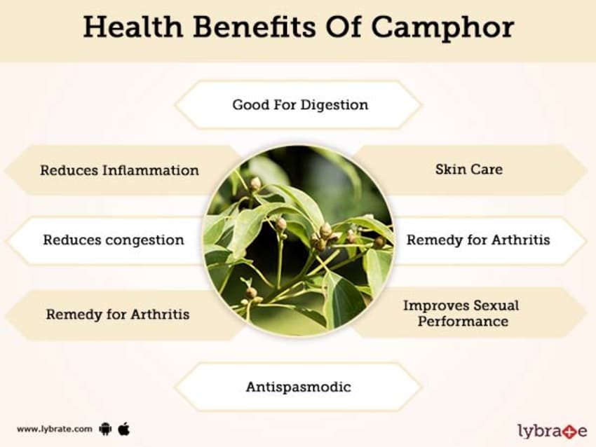 Benefits of Camphor And Its Side Effects | Lybrate