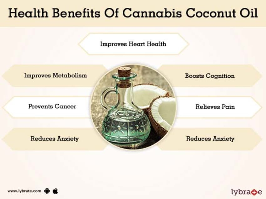 Benefits of Cannabis Coconut Oil And Its Side Effects | Lybrate