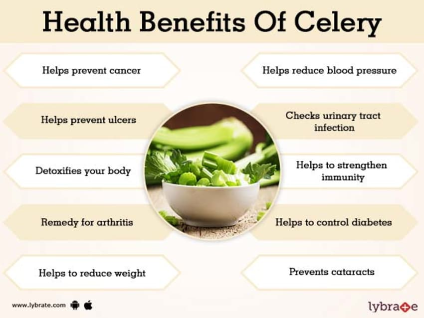 Benefits of Celery And Its Side Effects | Lybrate