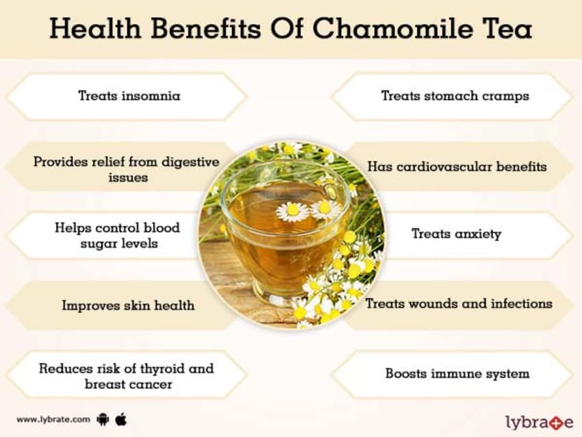 Benefits of Chamomile Tea And Its Side Effects | Lybrate