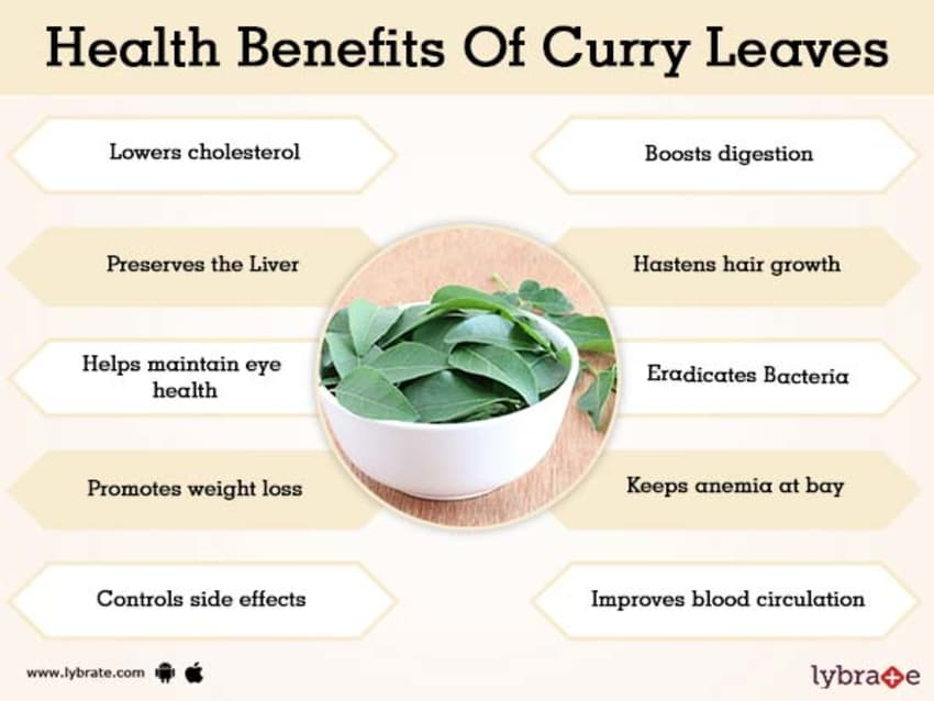 Benefits of Curry Leaves And Its Side Effects | Lybrate