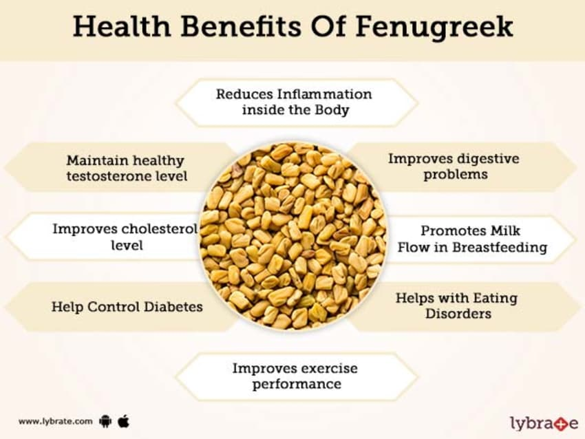 Fenugreek Benefits And Its Side Effects | Lybrate