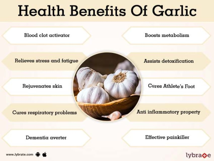Image result for The Most Important Health Benefits of Eating Garlic