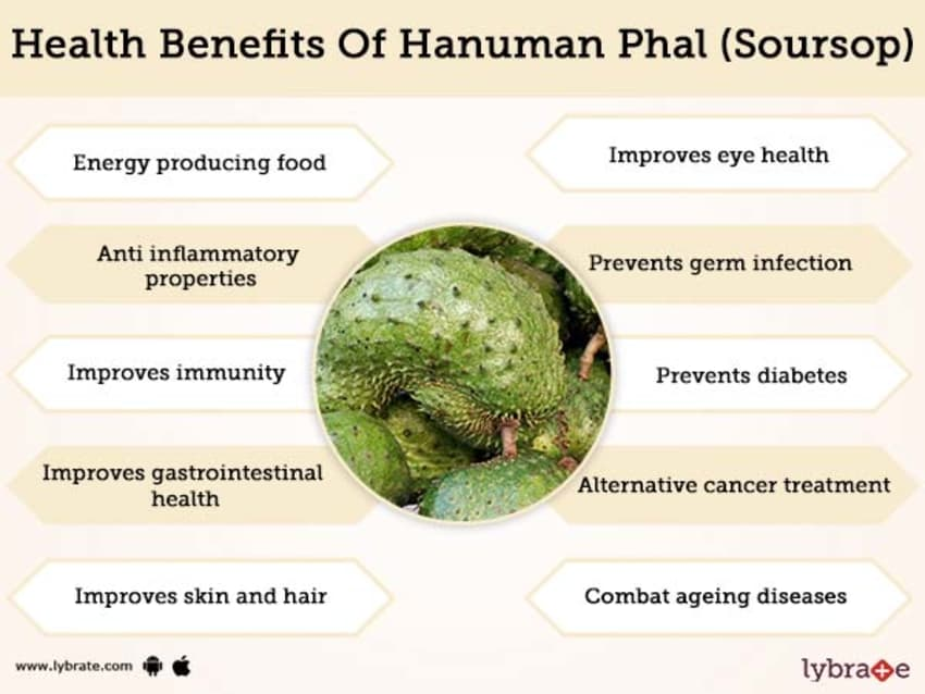 Hanuman Phal (Soursop) Benefits And Its Side Effects   Lybrate