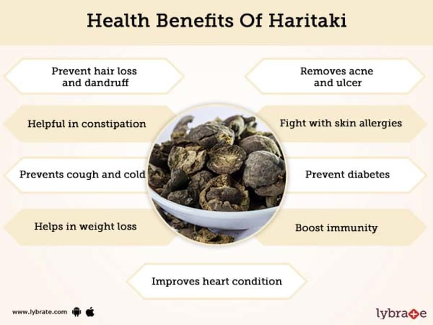 Haritaki Benefits And Its Side Effects Lybrate