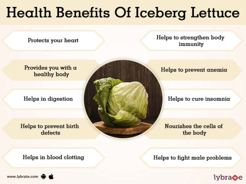 Benefits Of Iceberg Lettuce And Its Side Effects Lybrate