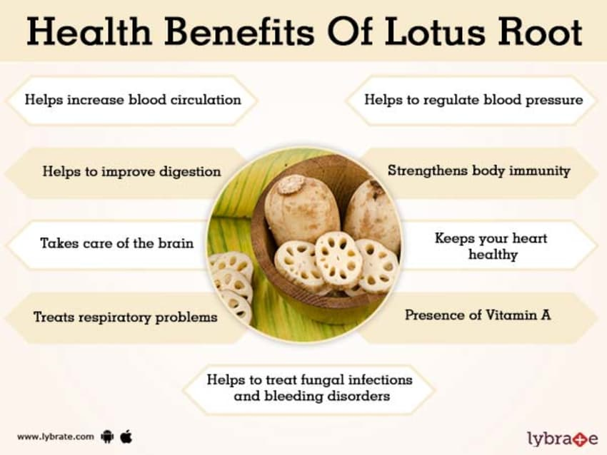Benefits Of Lotus Root And Its Side Effects Lybrate