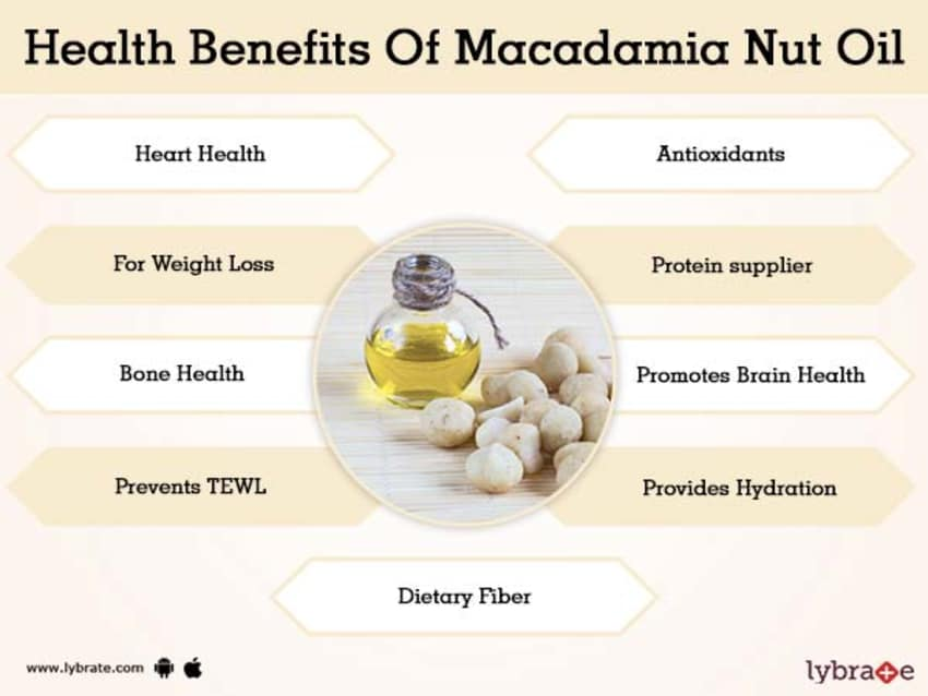 infographic macadamia nuts