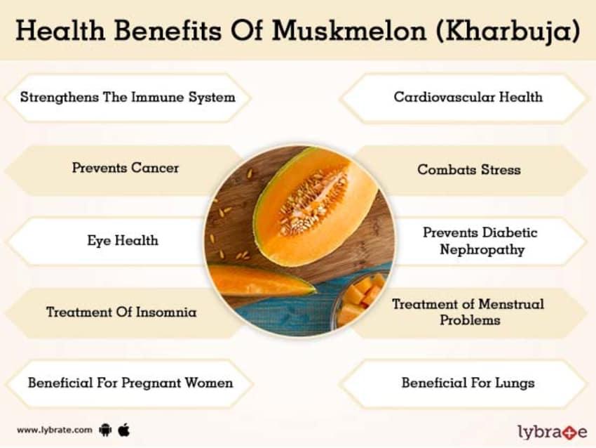Muskmelon (Kharbuja) Benefits And Its Side Effects | Lybrate