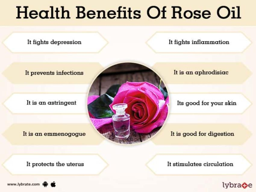Benefits Of Rose Oil And Its Side Effects Lybrate