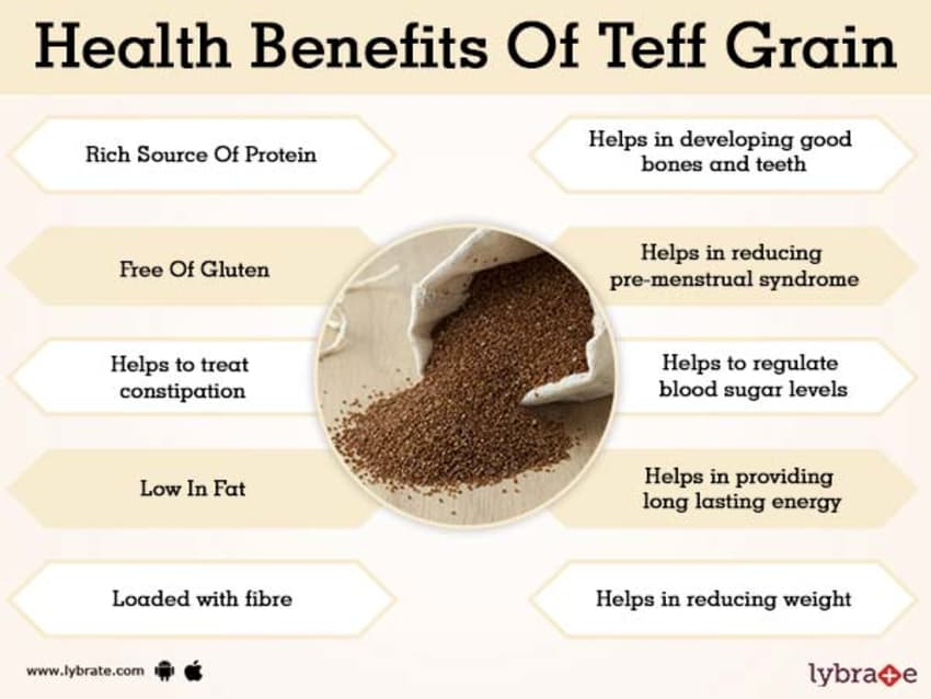Benefits of Teff Grain And Its Side Effects
