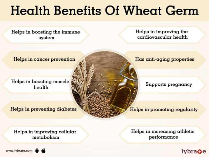 Benefits of Wheat Germ And Its Side Effects | Lybrate