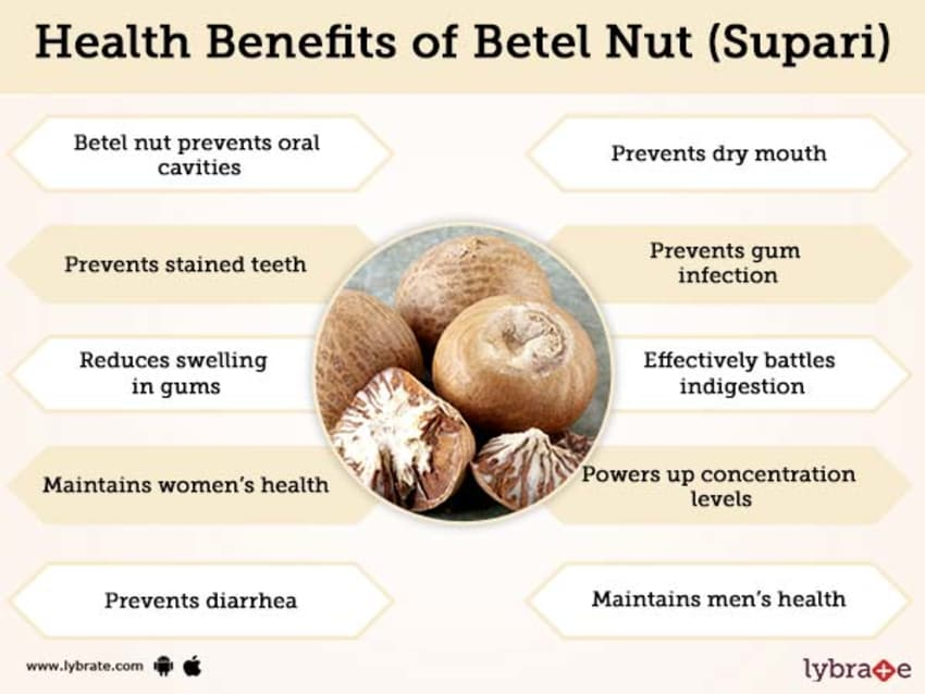 Betel Nut (Supari) Benefits And Its Side Effects | Lybrate