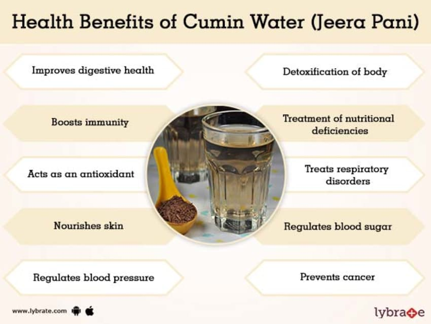 Cumin Water Jeera Pani Benefits And Its Side Effects Lybrate