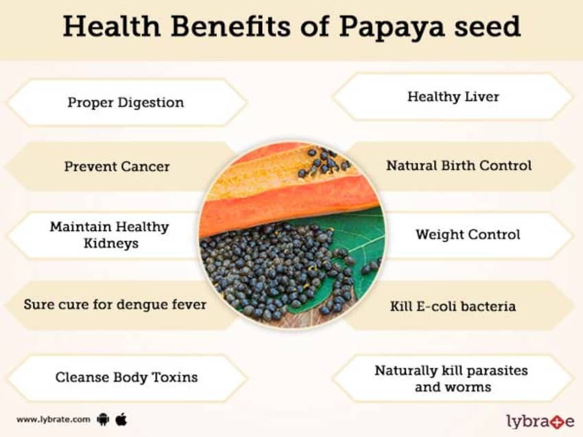 Papaya seed Benefits And Its Side Effects | Lybrate