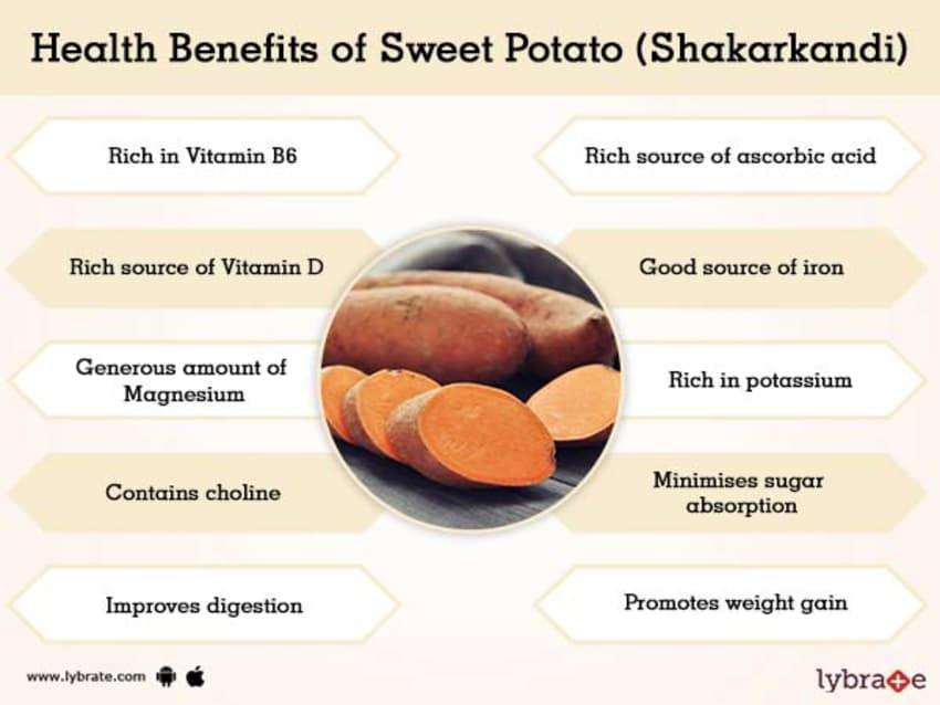 Sweet Potato ShakarkAndi Benefits And Its Side Effects
