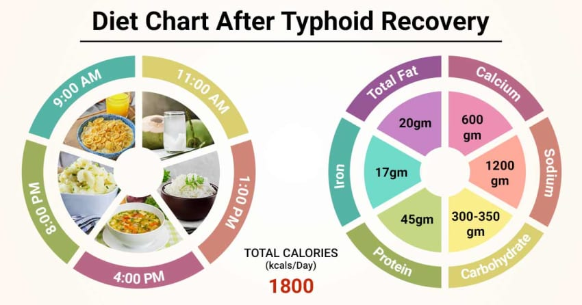 Diet Chart For after typhoid recovery Patient, Diet After