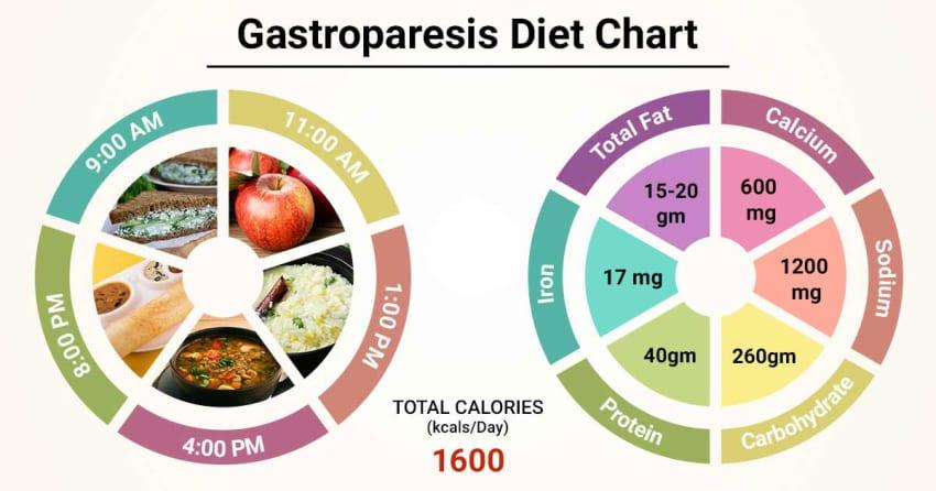 diabetic gastroparesis diet handout