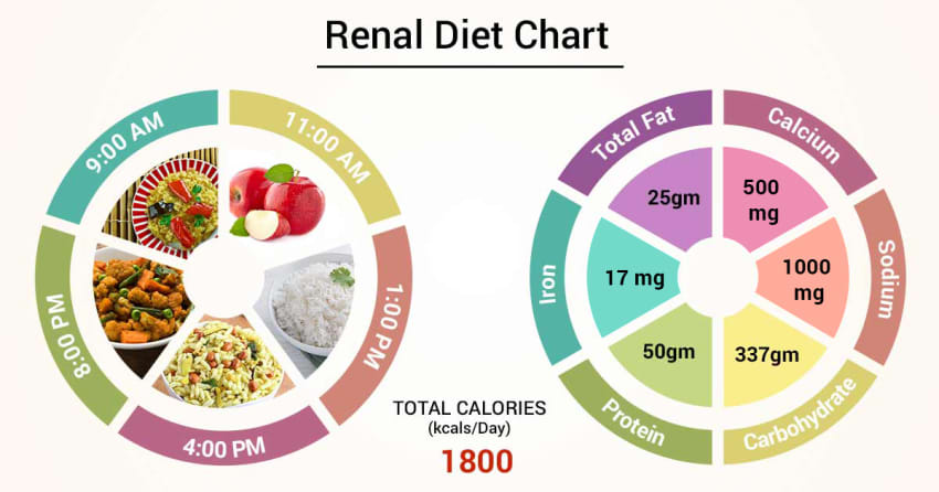 who does renal diet