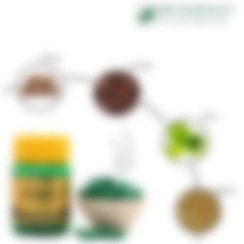 Herbofit: Ayurvedic Chyawanprash Capsules – (Pack of 2) - 2